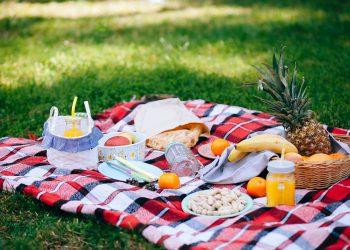 Segurança alimentar no verão: previna as intoxicações!